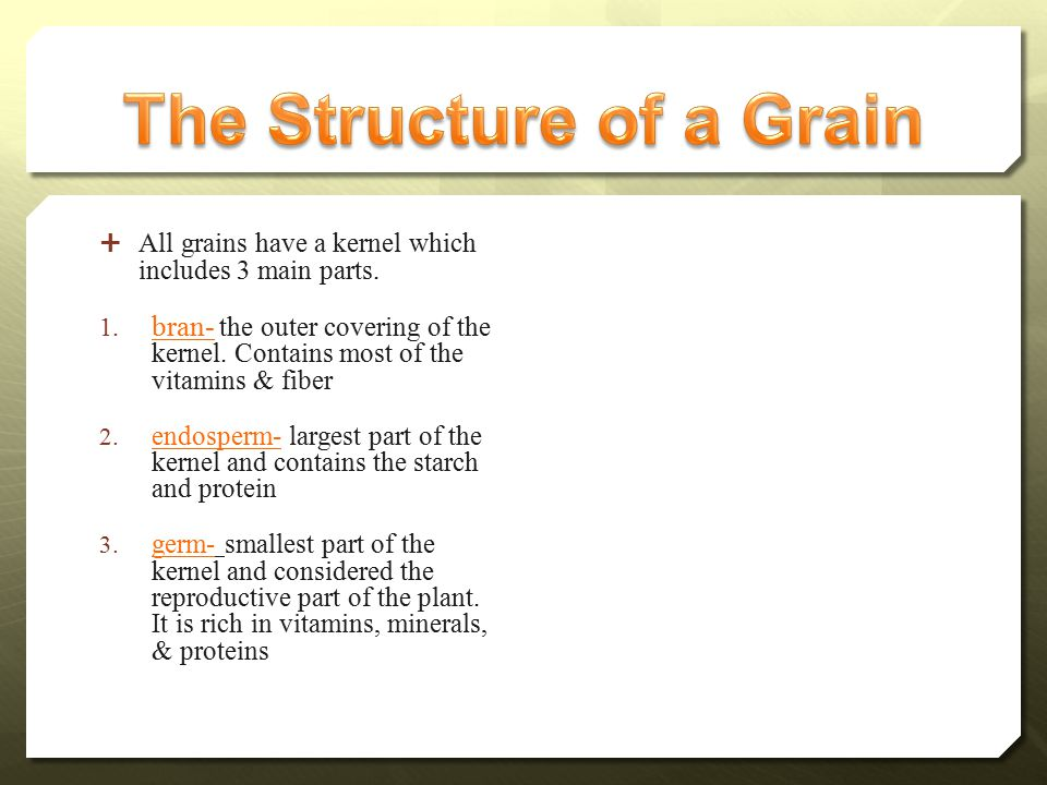  All grains have a kernel which includes 3 main parts.