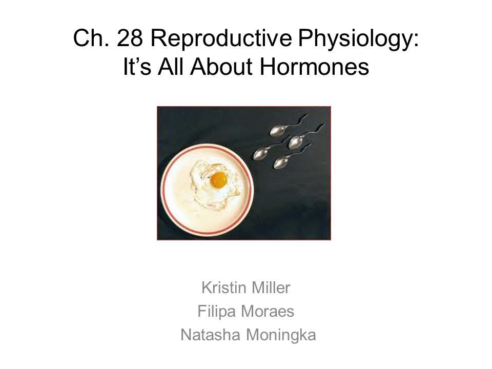 Ch. 28 Reproductive Physiology: It's All About Hormones Kristin Miller Filipa Moraes Natasha Moningka