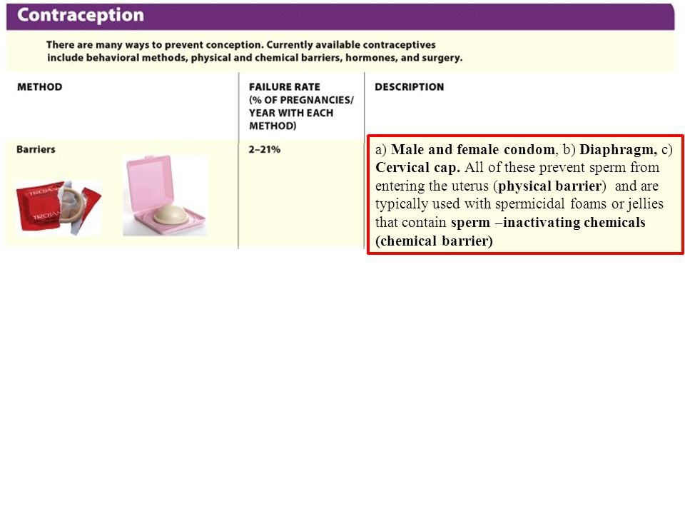 a) Male and female condom, b) Diaphragm, c) Cervical cap.