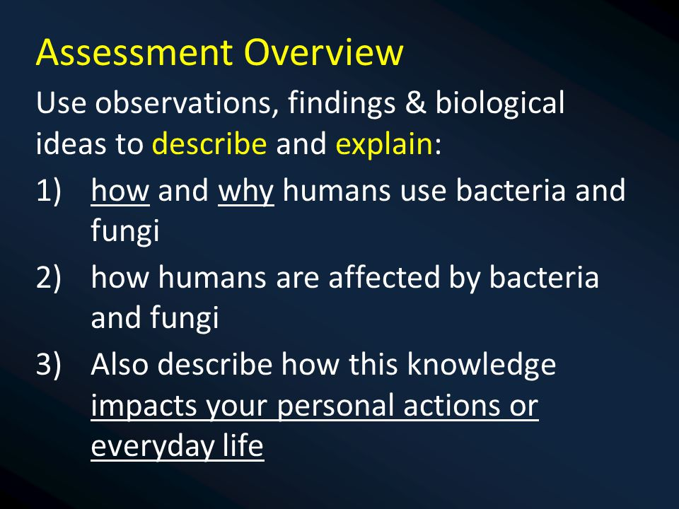 Assessment Overview Use observations, findings & biological ideas to describe and explain: 1)how and why humans use bacteria and fungi 2)how humans are affected by bacteria and fungi 3)Also describe how this knowledge impacts your personal actions or everyday life