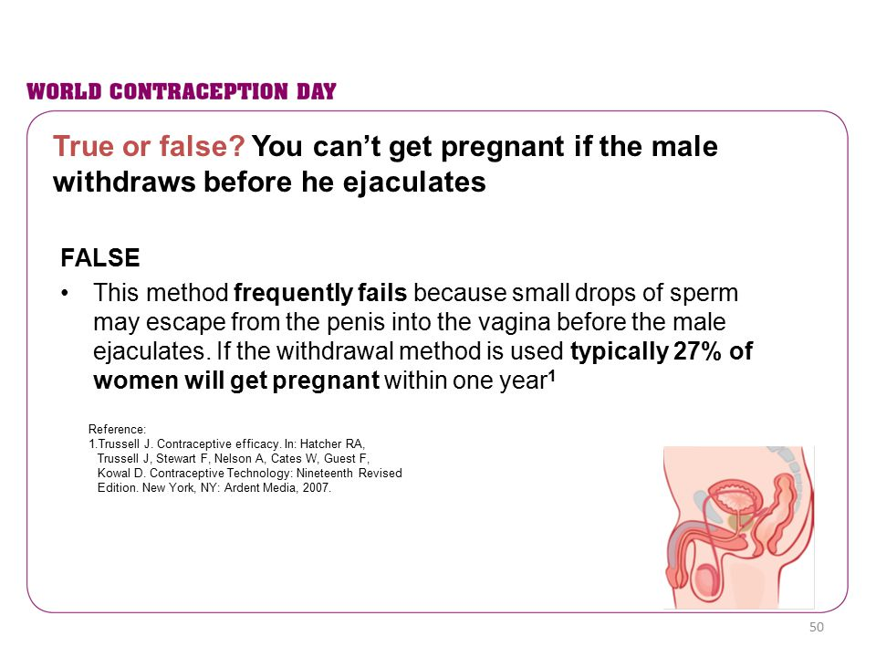 True or false? You can't get pregnant if the male withdraws before he ejaculates FALSE This method frequently fails because small drops of sperm may e
