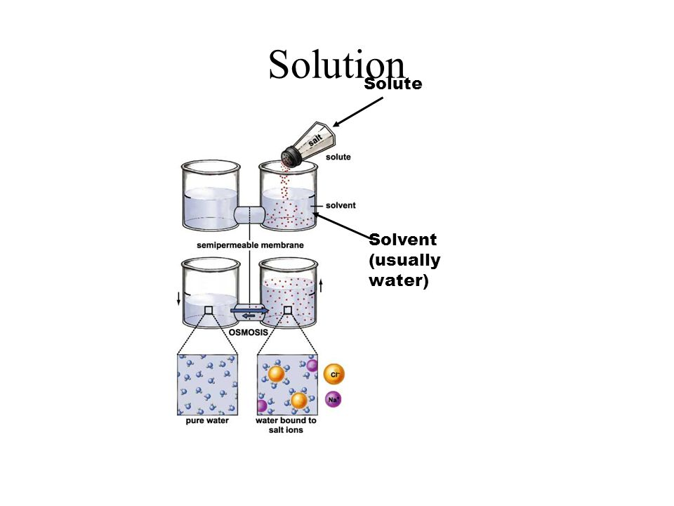Solution Solute Solvent (usually water)