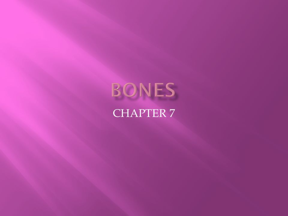  4) Ramus: Armlike bar of bone