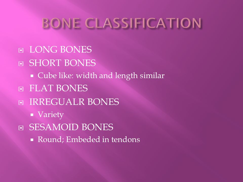  TYPES: BREAKFAST-LUNCH-SUPPER  CURVATURES:  PRIMARY:  AT BIRTH  THORACIC  SACRAL  SECONDARY  CERVICAL.