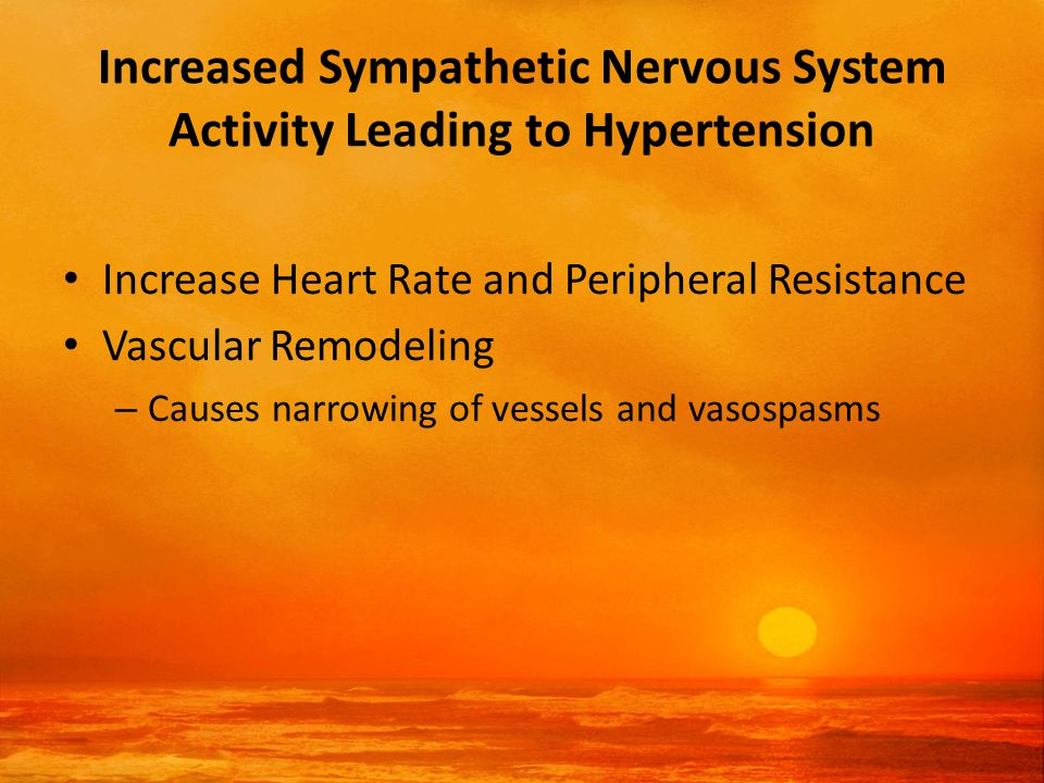 Increased Sympathetic Nervous System Activity Leading to Hypertension Increase Heart Rate and Peripheral Resistance Vascular Remodeling – Causes narrowing of vessels and vasospasms
