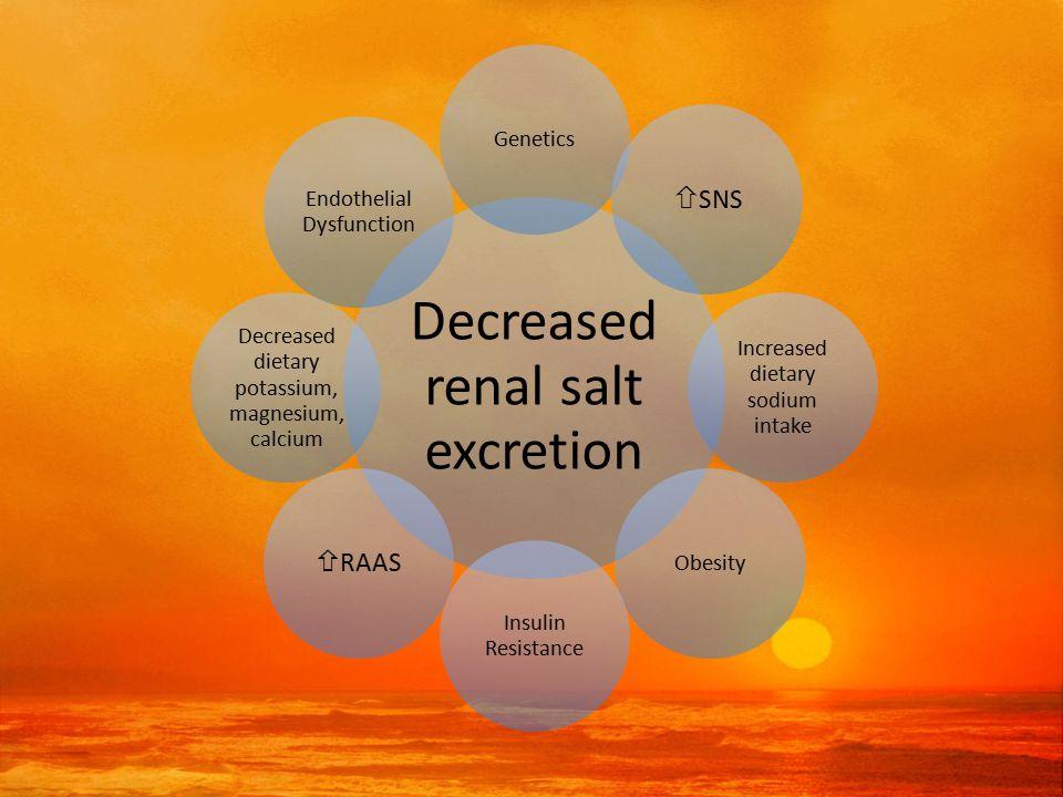 Decreased renal salt excretion Genetics  SNS Increased dietary sodium intake Obesity Insulin Resistance  RAAS Decreased dietary potassium, magnesium