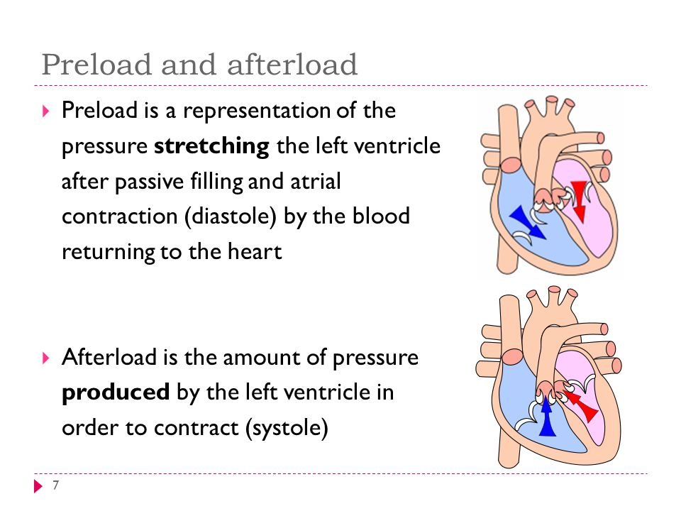 Preload and afterload 7  Preload is a representation of the pressure stretching the left ventricle after passive filling and atrial contraction (diastole) by the blood returning to the heart  Afterload is the amount of pressure produced by the left ventricle in order to contract (systole)
