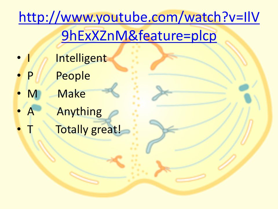 http://www.youtube.com/watch v=IlV 9hExXZnM&feature=plcp I Intelligent P People M Make A Anything T Totally great!