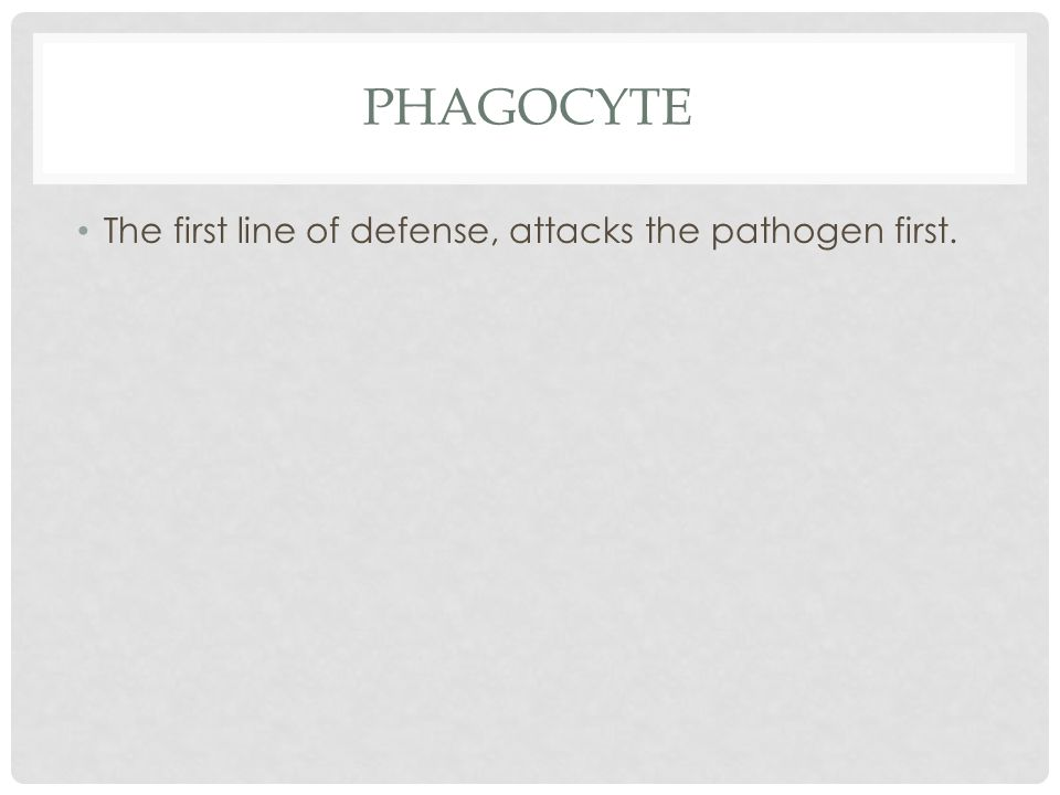 The first line of defense, attacks the pathogen first.