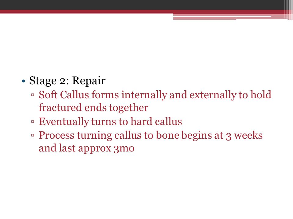 Stage 2: Repair ▫Soft Callus forms internally and externally to hold fractured ends together ▫Eventually turns to hard callus ▫Process turning callus to bone begins at 3 weeks and last approx 3mo