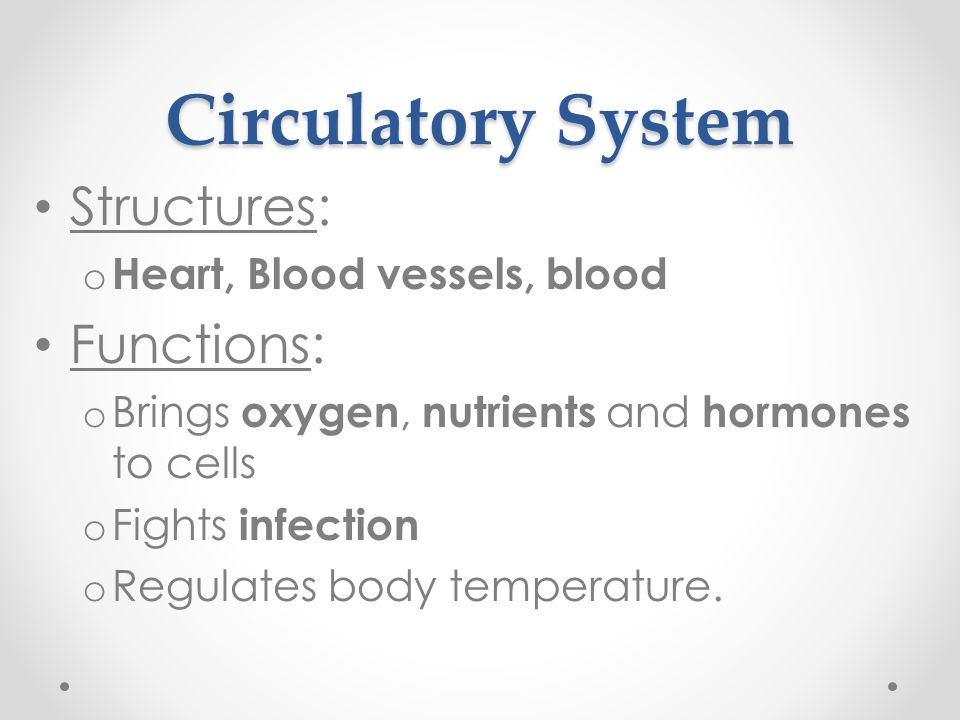 Disorders of the Circulatory System Stroke = Death of cells in the brain.
