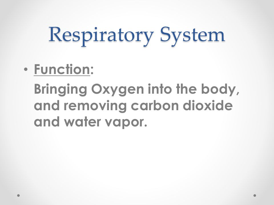 Respiratory System Function: Bringing Oxygen into the body, and removing carbon dioxide and water vapor.