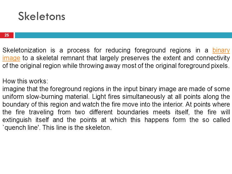 Skeletons 25 Skeletonization is a process for reducing foreground regions in a binary image to a skeletal remnant that largely preserves the extent an