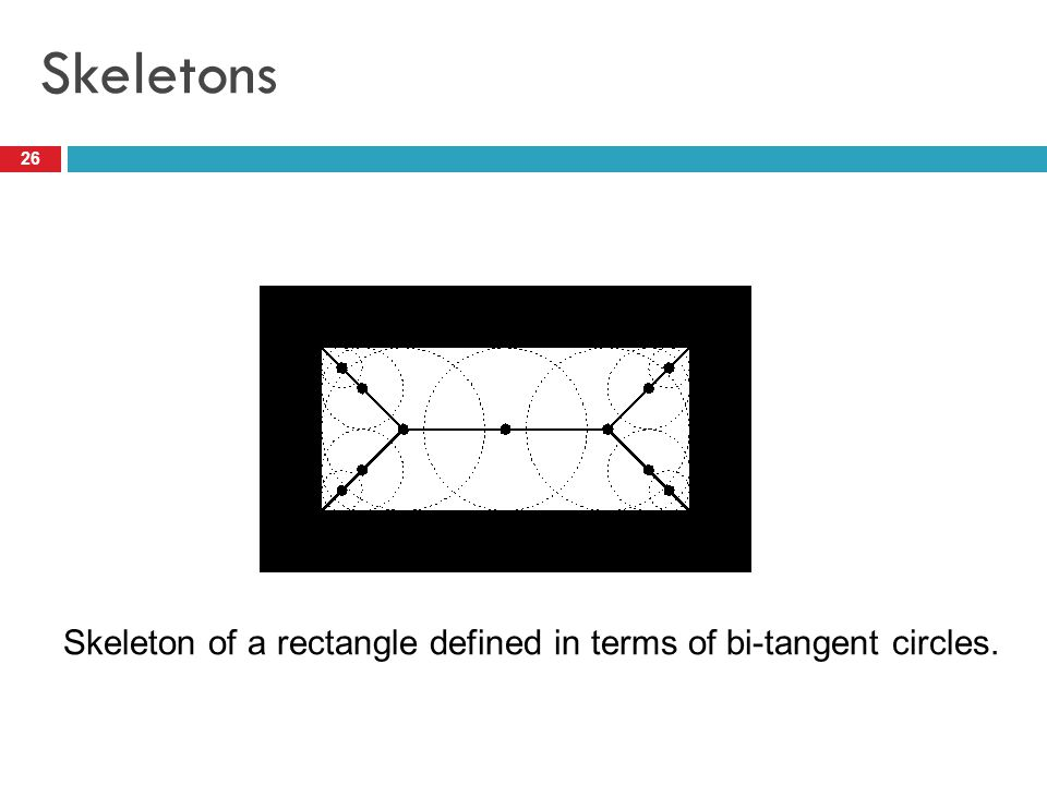 Skeletons 26 Skeleton of a rectangle defined in terms of bi-tangent circles.