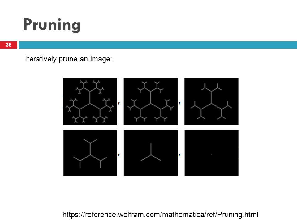 Pruning 36 Iteratively prune an image: https://reference.wolfram.com/mathematica/ref/Pruning.html
