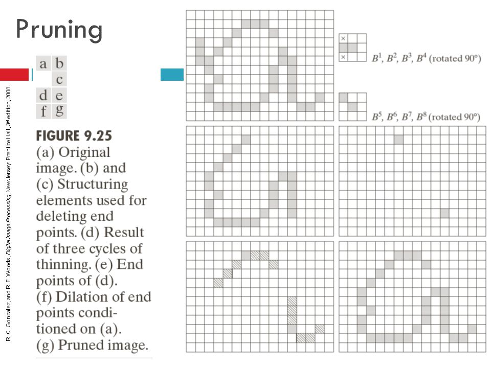 R. C. Gonzalez, and R. E. Woods, Digital Image Processing, New Jersey: Prentice Hall, 3 rd edition, 2008. Pruning