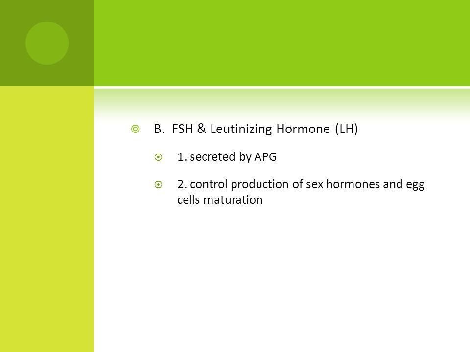  B. FSH & Leutinizing Hormone (LH)  1. secreted by APG  2.