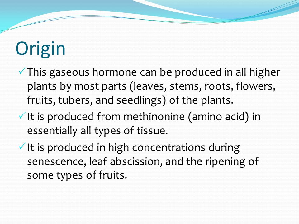 Origin  This gaseous hormone can be produced in all higher plants by most parts (leaves, stems, roots, flowers, fruits, tubers, and seedlings) of the plants.
