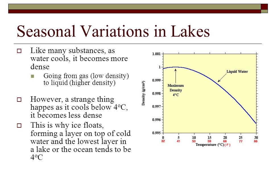 Seasonal Variations in Lakes  Like many substances, as water cools, it becomes more dense Going from gas (low density) to liquid (higher density)  H
