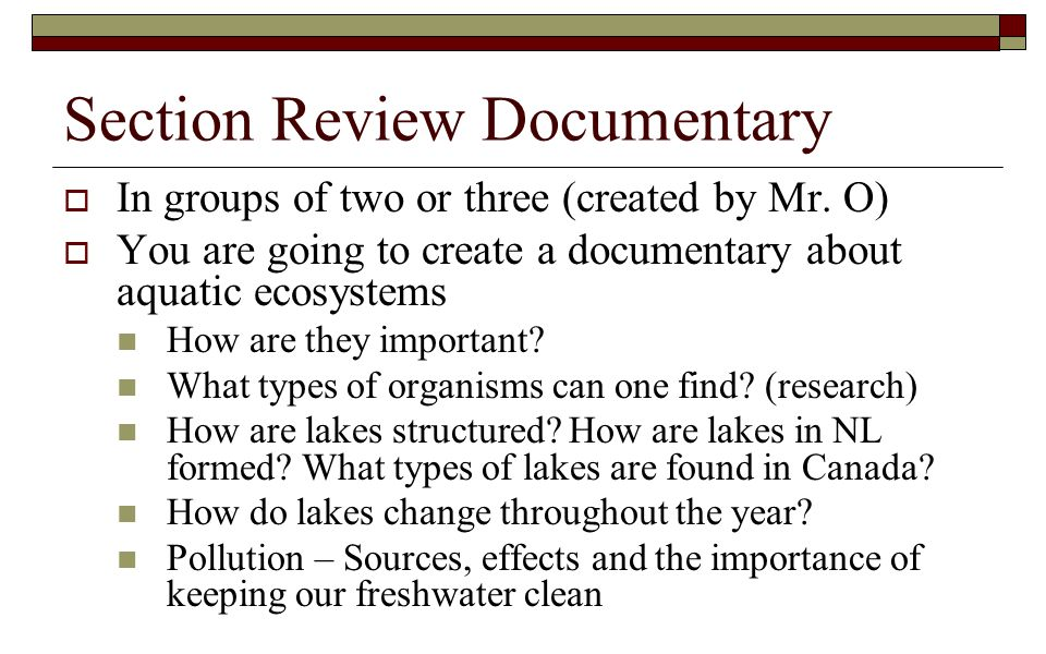 Section Review Documentary  In groups of two or three (created by Mr. O)  You are going to create a documentary about aquatic ecosystems How are the