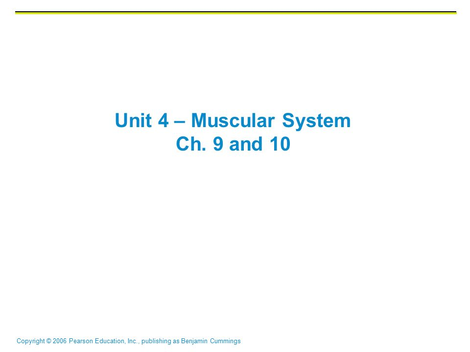 Copyright © 2006 Pearson Education, Inc., publishing as Benjamin Cummings Unit 4 – Muscular System Ch.
