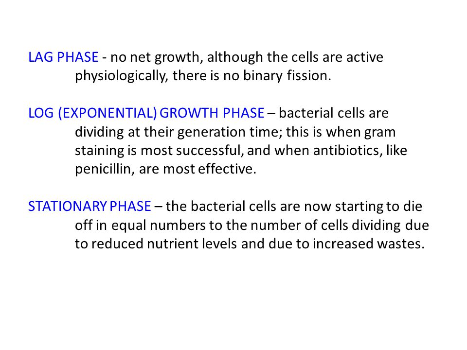 LAG PHASE - no net growth, although the cells are active physiologically, there is no binary fission.