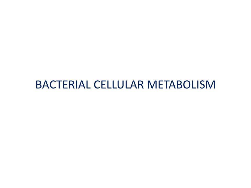 BACTERIAL CELLULAR METABOLISM