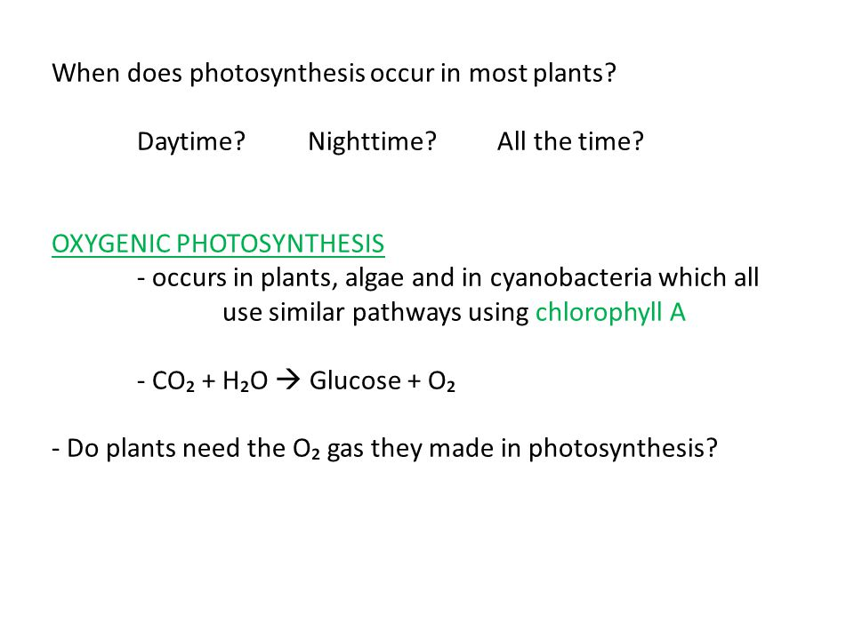 When does photosynthesis occur in most plants? Daytime?Nighttime? All the time? OXYGENIC PHOTOSYNTHESIS - occurs in plants, algae and in cyanobacteria