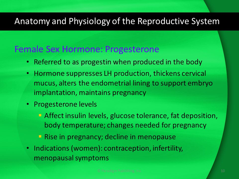 Anatomy and Physiology of the Reproductive System Female Sex Hormone: Progesterone Referred to as progestin when produced in the body Hormone suppress