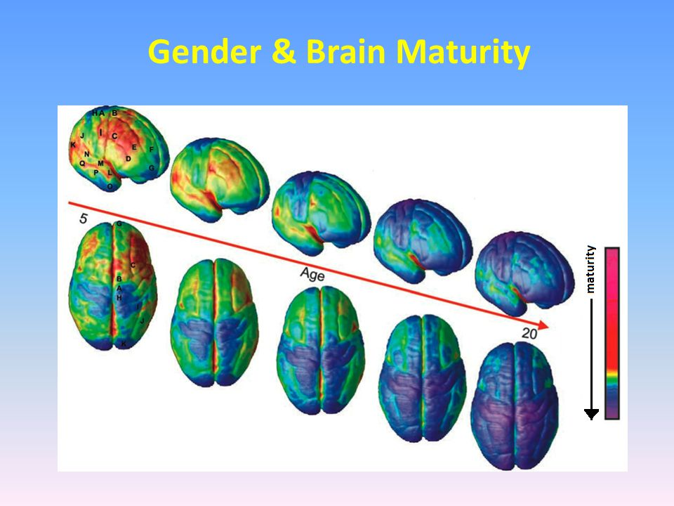 Gender & Brain Maturity