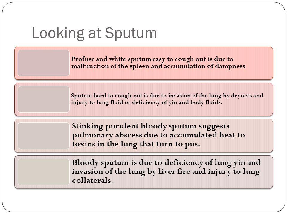 Looking at Sputum