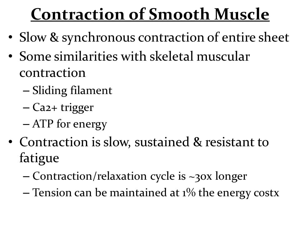 Contraction of Smooth Muscle Slow & synchronous contraction of entire sheet Some similarities with skeletal muscular contraction – Sliding filament –