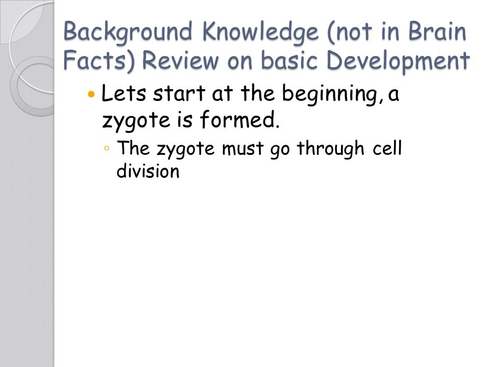 Background Knowledge (not in Brain Facts) Review on basic Development Lets start at the beginning, a zygote is formed. ◦ The zygote must go through ce