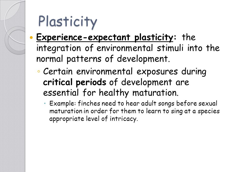 Plasticity Experience-expectant plasticity: the integration of environmental stimuli into the normal patterns of development. ◦ Certain environmental
