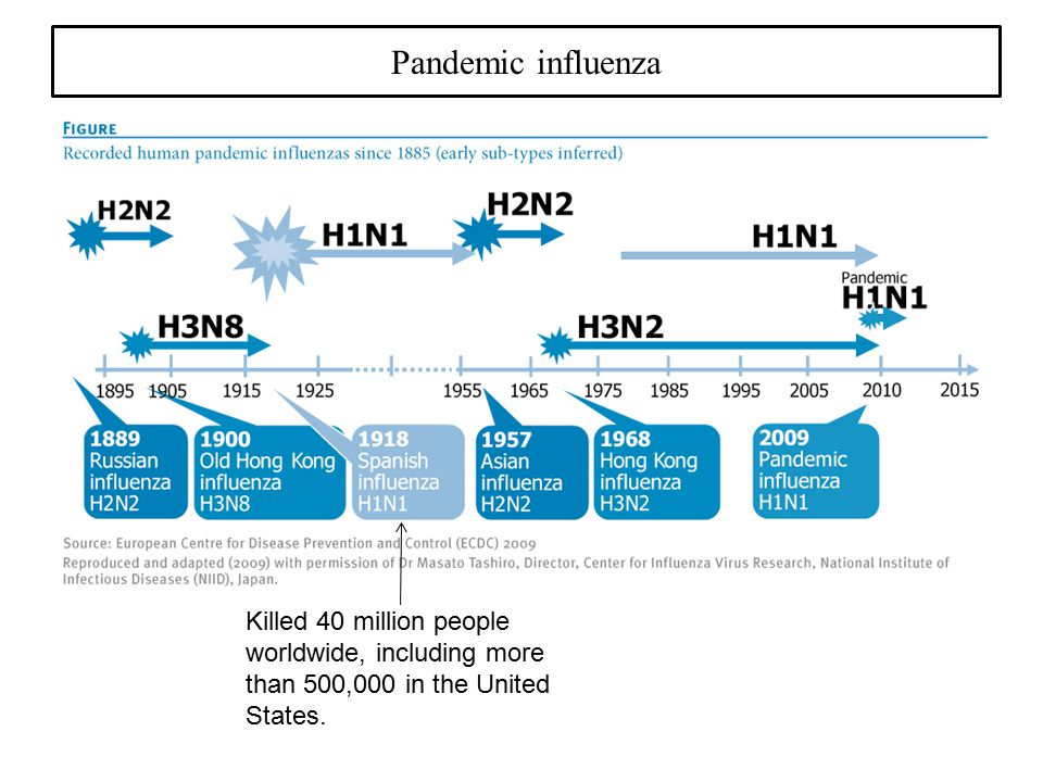 Pandemic influenza Killed 40 million people worldwide, including more than 500,000 in the United States.