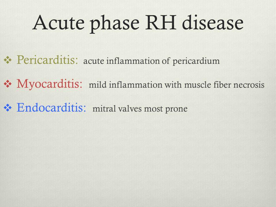 Acute phase RH disease  Pericarditis: acute inflammation of pericardium  Myocarditis: mild inflammation with muscle fiber necrosis  Endocarditis: m
