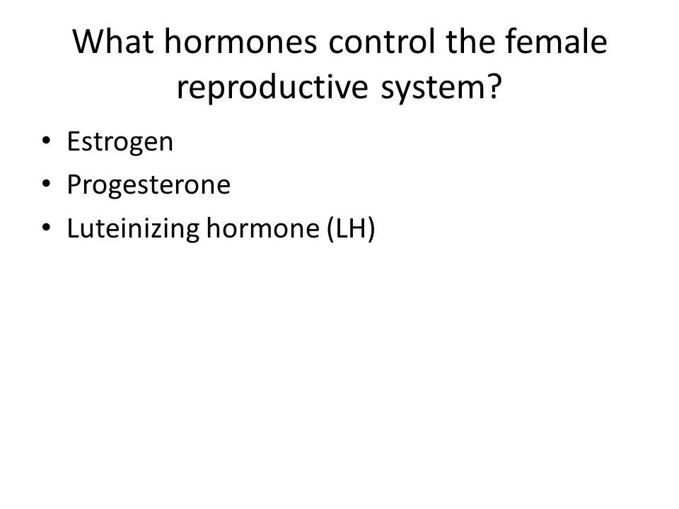 What hormones control the female reproductive system? Estrogen Progesterone Luteinizing hormone (LH)