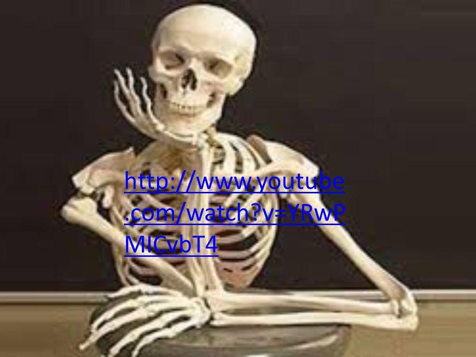 http://www.youtube.com/watch?v=YRwP MICvbT4