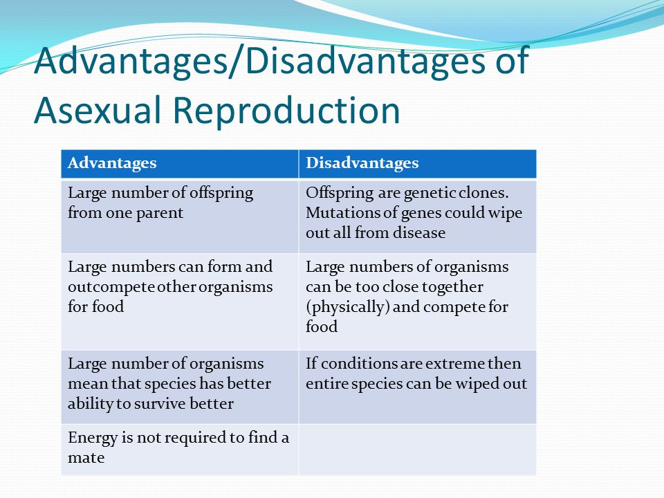 Advantages/Disadvantages of Asexual Reproduction AdvantagesDisadvantages Large number of offspring from one parent Offspring are genetic clones.