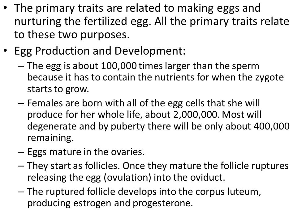The primary traits are related to making eggs and nurturing the fertilized egg. All the primary traits relate to these two purposes. Egg Production an