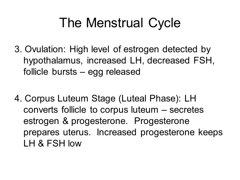 The Menstrual Cycle 3. Ovulation: High level of estrogen detected by hypothalamus, increased LH, decreased FSH, follicle bursts – egg released 4. Corp