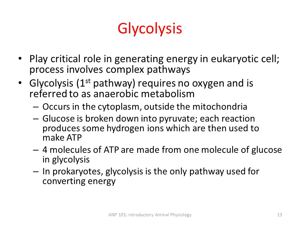 Glycolysis Play critical role in generating energy in eukaryotic cell; process involves complex pathways Glycolysis (1 st pathway) requires no oxygen