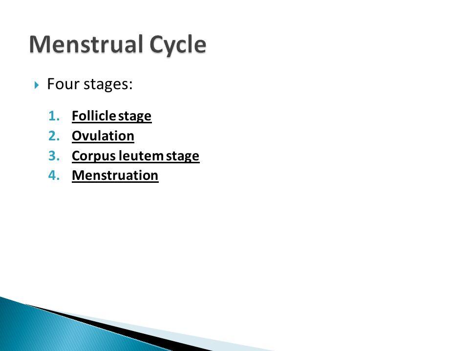  Four stages: 1.Follicle stage 2.Ovulation 3.Corpus leutem stage 4.Menstruation