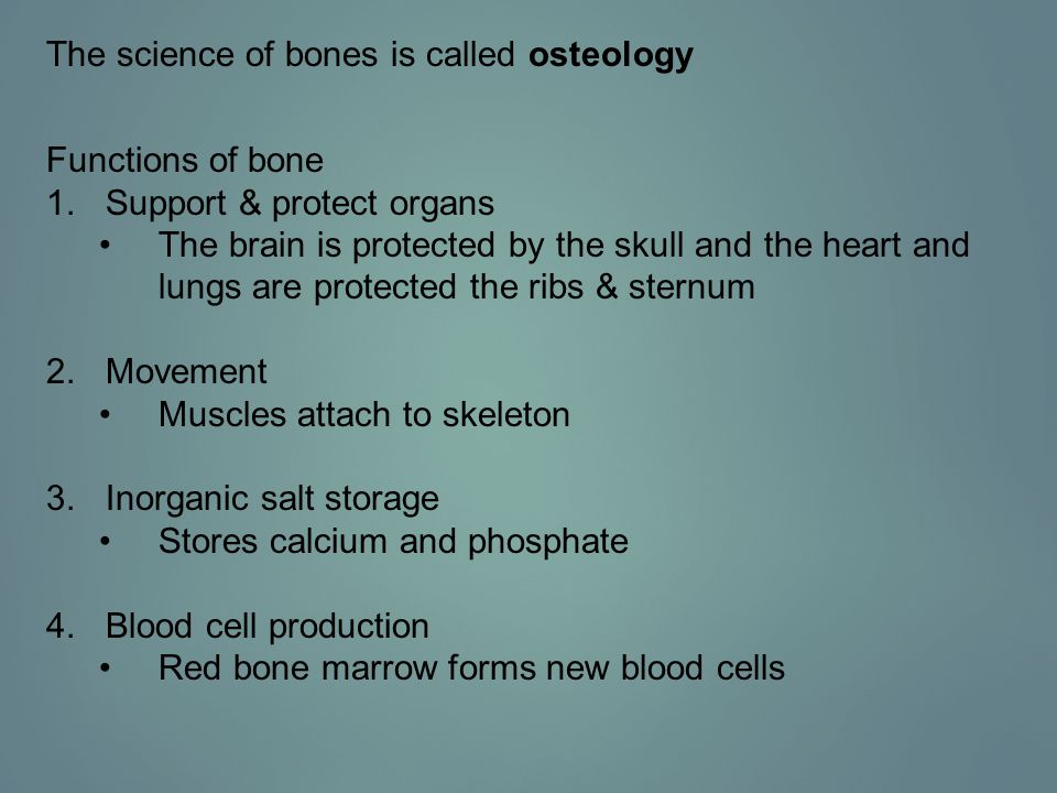 End of Chapter 7, Section 2 Ways to delay or prevent osteoporosis: 1.Exercise daily.
