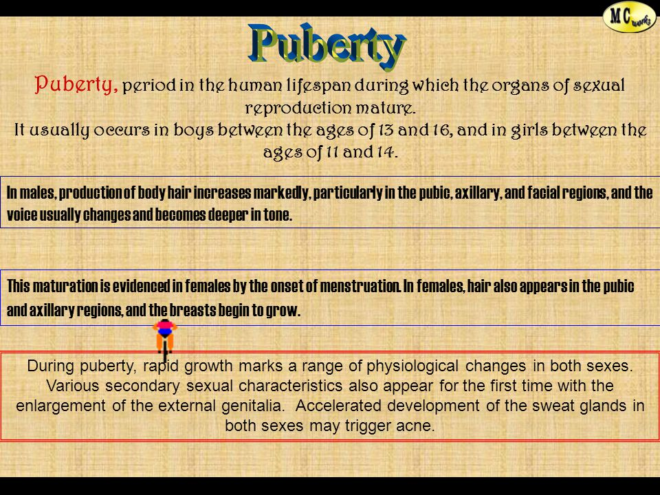 Menstrual [ bleeding ] phase This occurs only when the implantation of fertilized ovum is not accomplished.