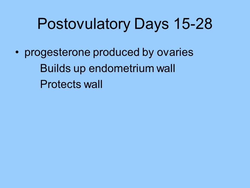 Postovulatory Days 15-28 progesterone produced by ovaries Builds up endometrium wall Protects wall