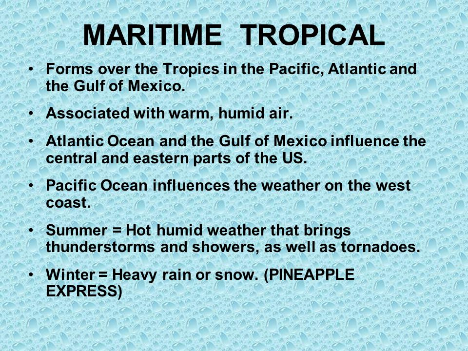 MARITIME TROPICAL Forms over the Tropics in the Pacific, Atlantic and the Gulf of Mexico. Associated with warm, humid air. Atlantic Ocean and the Gulf