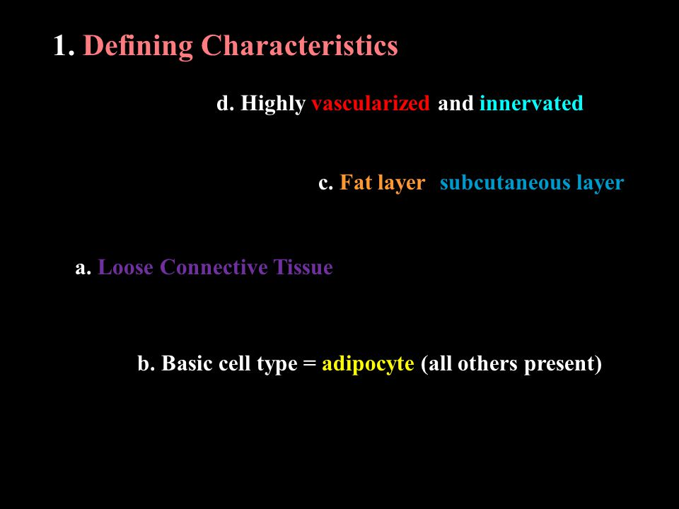 1. Defining Characteristics a. Loose Connective Tissue b.
