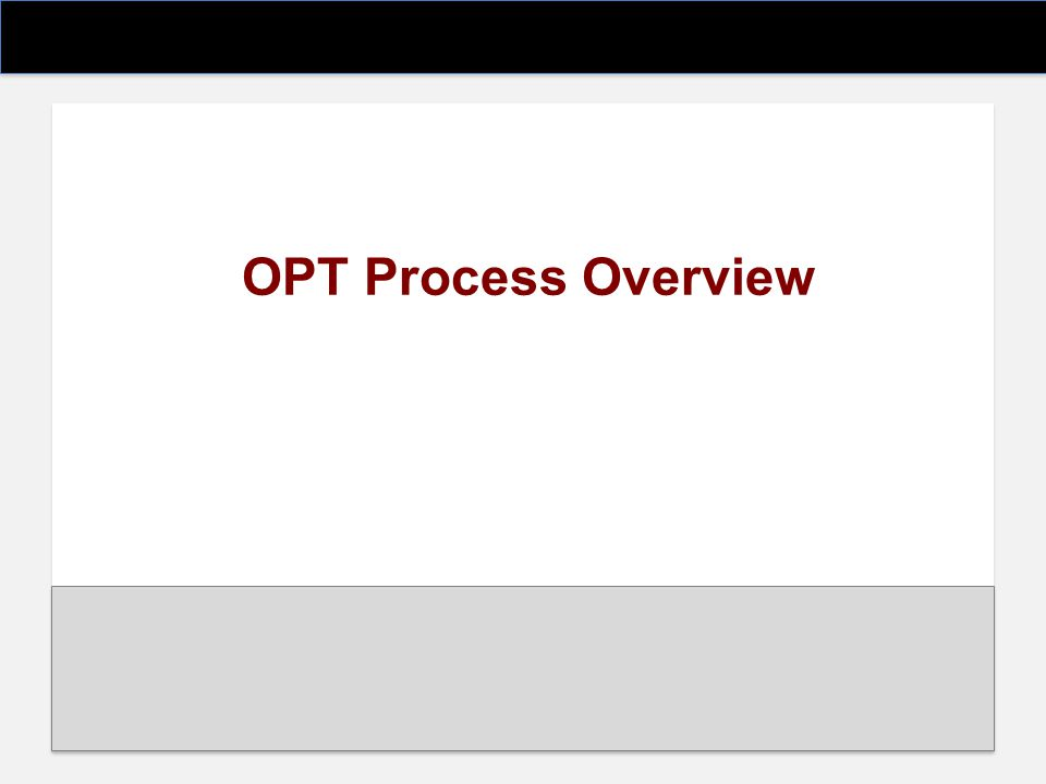 OPT Process Overview