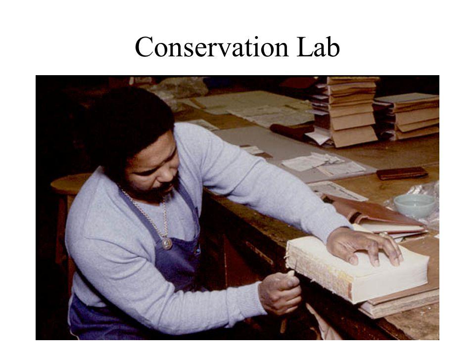 Conservation Lab